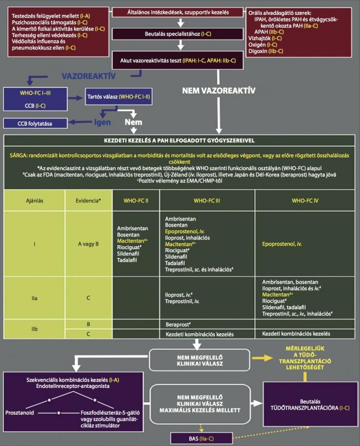 pulmonalis hipertónia szindróma