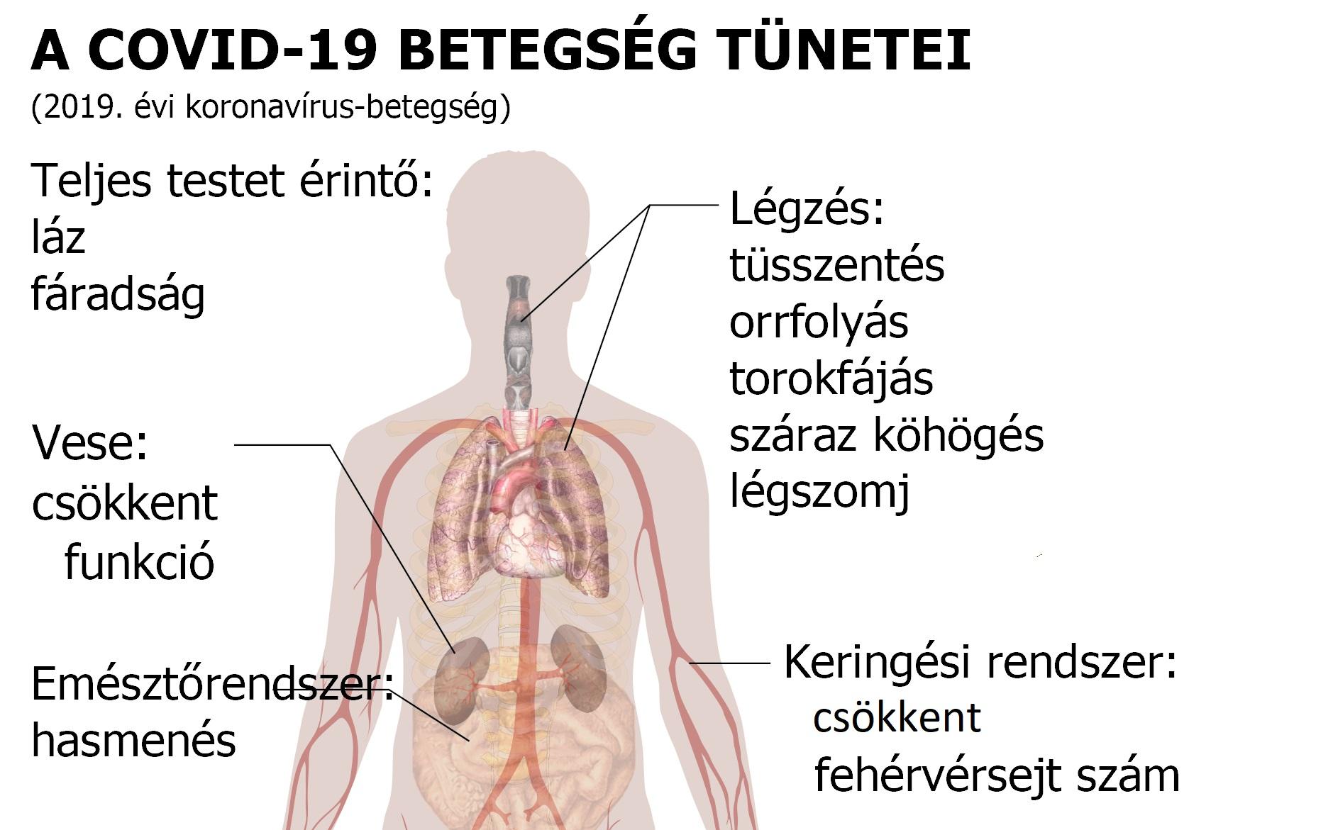 magas vérnyomás tüdő szövődményekkel