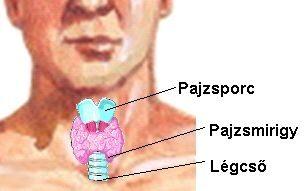pajzsmirigy és magas vérnyomás a magas vérnyomás osteochondrosisból származhat