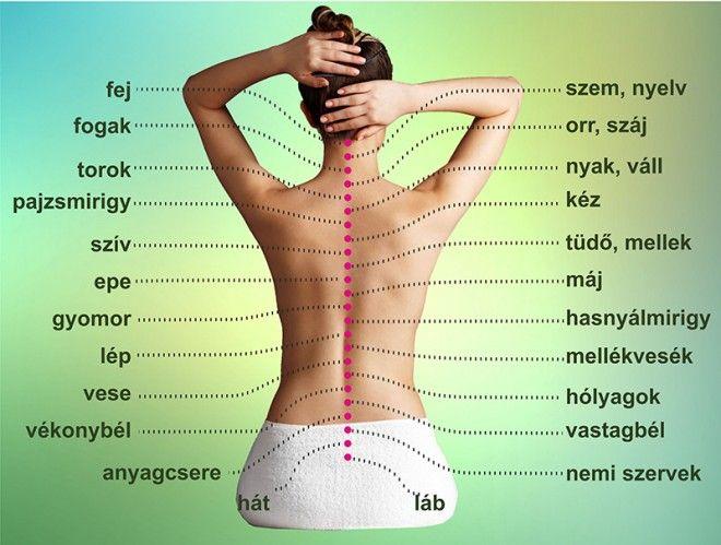 hátfájás magas vérnyomás