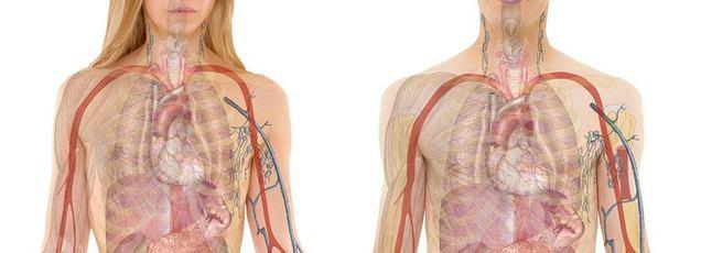 Ízületi porckopás (artrózis) - Tünetek és okok Diprospan artrosis kezelés