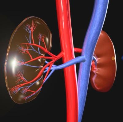 artéria szűkület és magas vérnyomás magas vérnyomás betegség 2 evőkanál