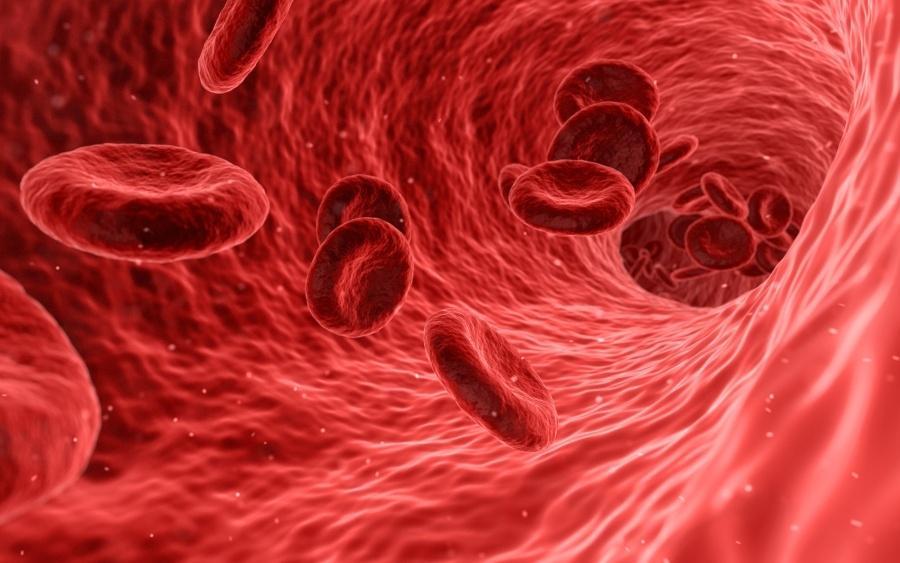 Hematokrit (HTC) - Mit jelez a vérképben?