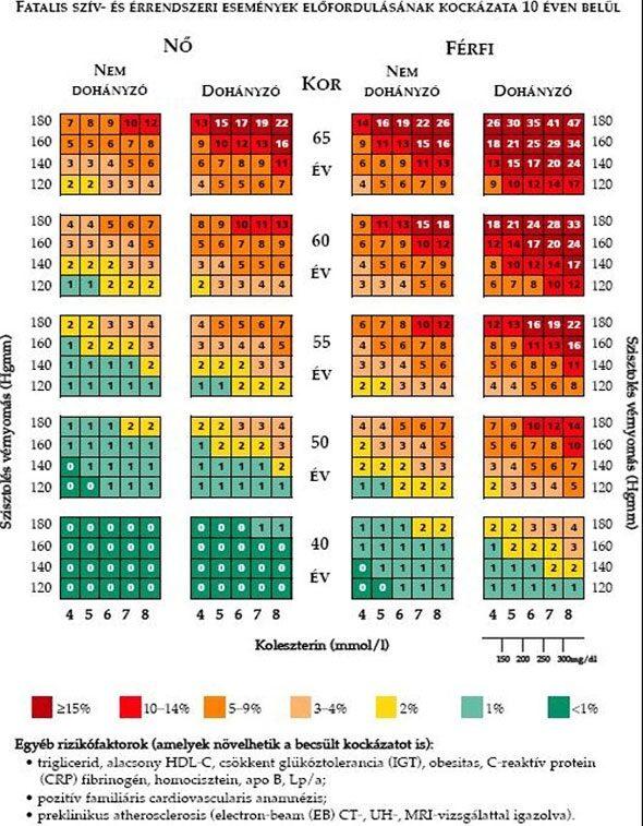 magas vérnyomás osztályozás