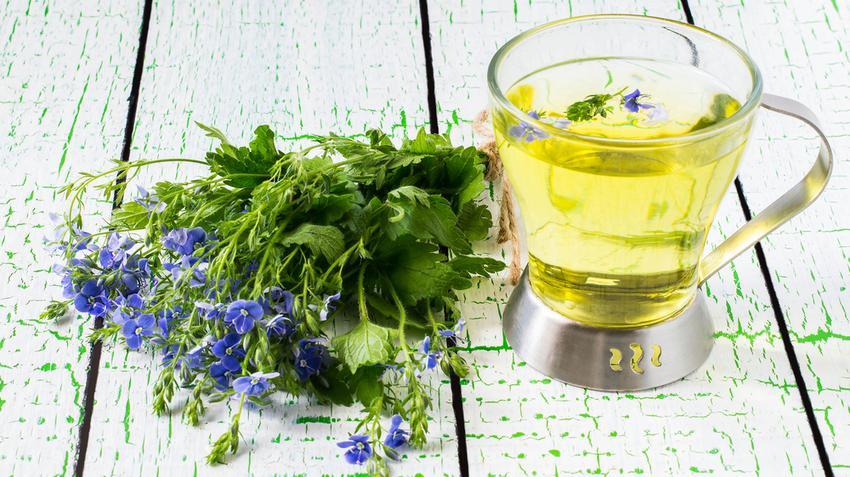házi növények magas vérnyomás ellen