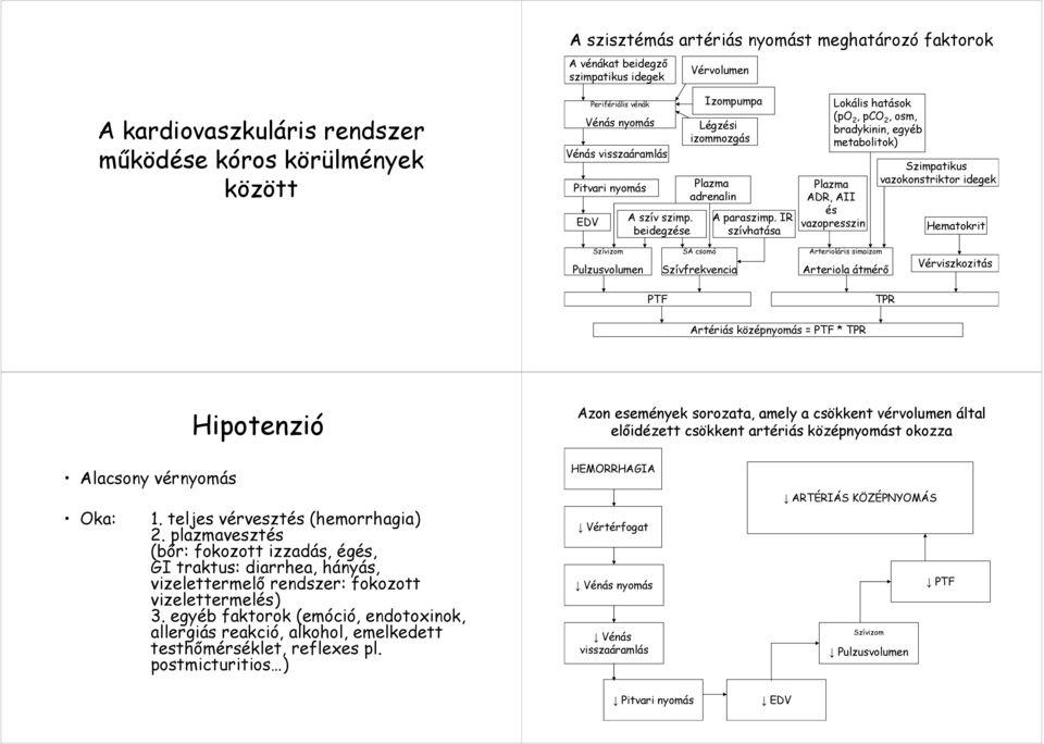 Hipotenzió: a patológia okai és fejlődésének mechanizmusa