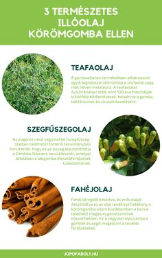 20+ Best Gyógynövények images in | gyógynövények, egészség, fűszernövények