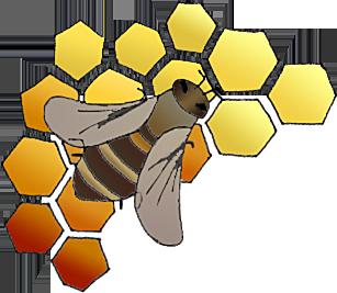 a méz segít a magas vérnyomásban