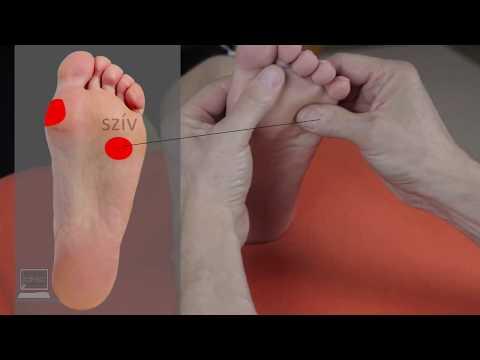 A magas vérnyomás következményeinek komplex vizsgálata - HáziPatika