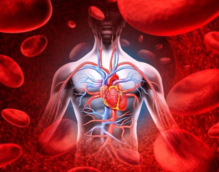 leo boqueria hipertónia kezelése magas vérnyomás elleni terhelés