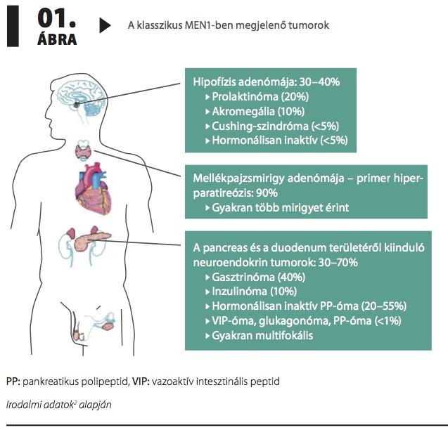 magas vérnyomás elleni vérnyomáscsökkentő szer
