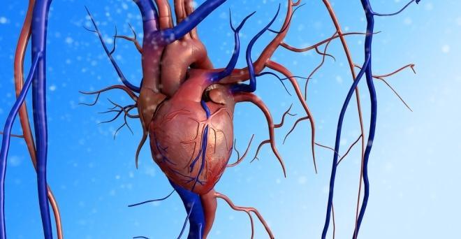 magas vérnyomás idős embereknél magas vérnyomás luule viilma