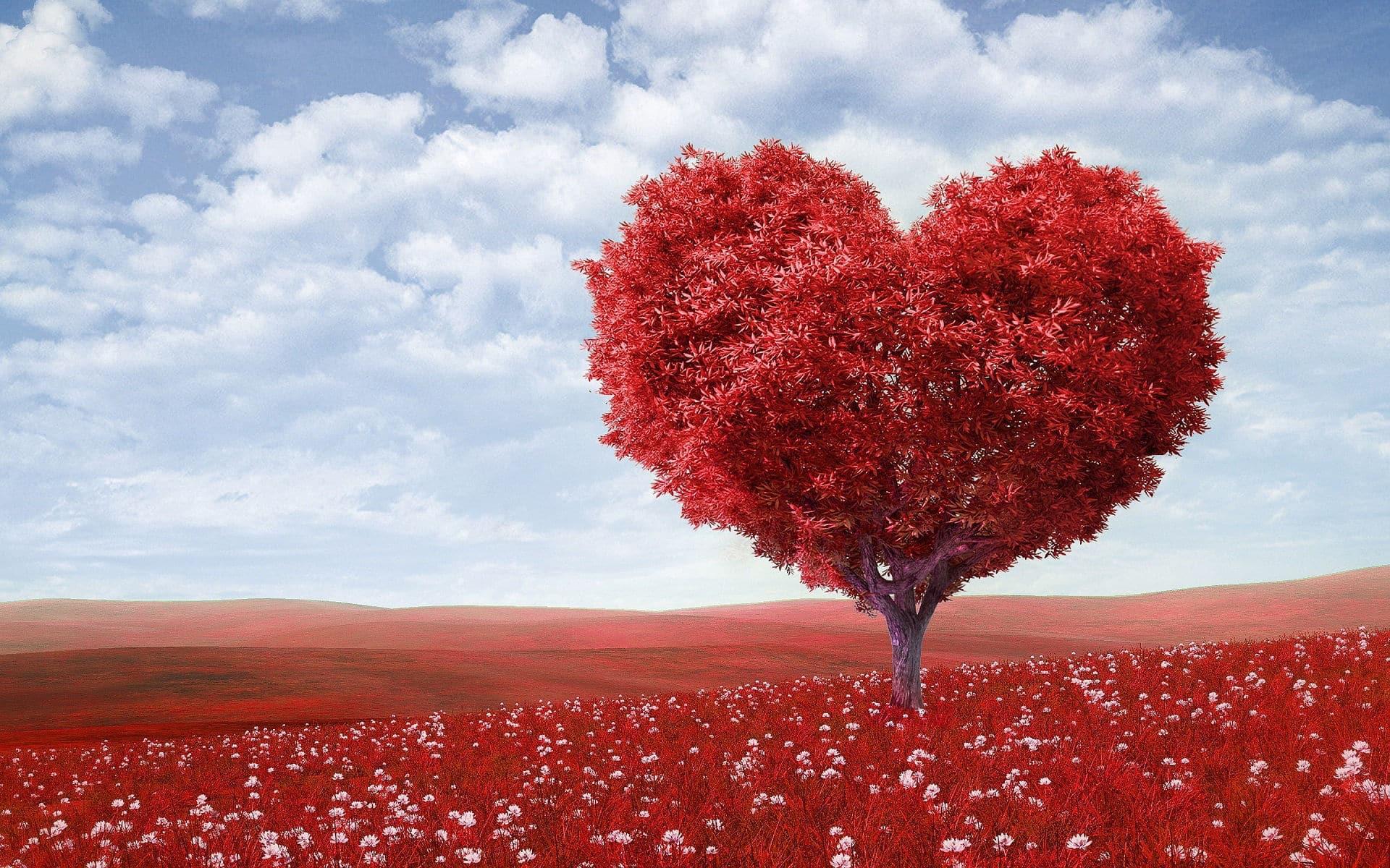 szívváltozás a magas vérnyomásból első fokú magas vérnyomás az