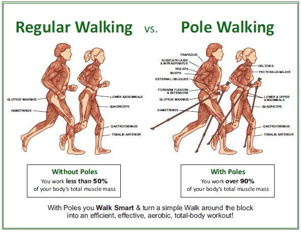 Testedzés két bottal - Nordic Walking - DiabFórum - Magyarország legnagyobb diabétesz közössége