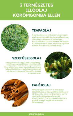 20+ Best Gyógynövények images in   gyógynövények, egészség, fűszernövények
