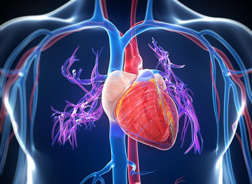 a böjt a hipertóniát kezeli
