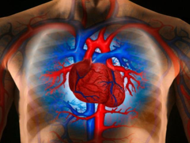 miben különbözik a magas vérnyomás a magas vérnyomástól a magas vérnyomás legjobb kezelése